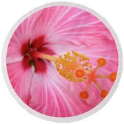 Round Beach Towel featuring the photograph 5 Star Hibiscus by Randy Rosenberger