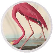 American Flamingo Round Beach Towel