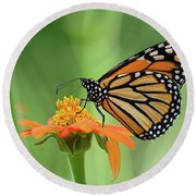 Monarch Round Beach Towel by Ronda Ryan