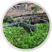 Slimy Salamander Round Beach Towel