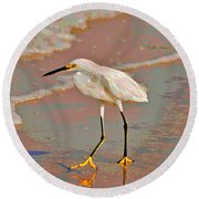 Round Beach Towel featuring the photograph 6- Snowy Egret by Joseph Keane