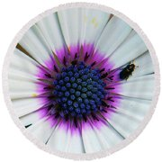 Round Beach Towel featuring the photograph White Flower by Elvira Ladocki