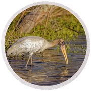 Round Beach Towel featuring the photograph Wood Stork by Peter Lakomy