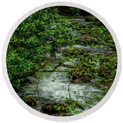 Round Beach Towel featuring the photograph Kens Creek Cranberry Wilderness by Thomas R Fletcher