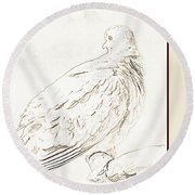 Round Beach Towel featuring the photograph Mourning Dove, Animal Portrait by A Gurmankin