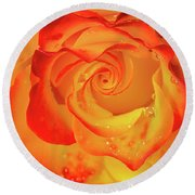 Rose Beauty Round Beach Towel by Shirley Mitchell