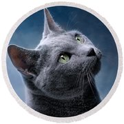 Russian Blue Cat Round Beach Towel by Nailia Schwarz