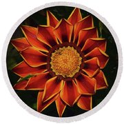 Round Beach Towel featuring the photograph Beautiful Gazania by Elvira Ladocki