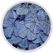 Blue Plumbago Round Beach Towel by Elvira Ladocki