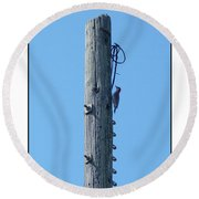 #866x Woodpecker Round Beach Towel by Barbara Tristan
