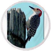 #8670 Woodpecker Round Beach Towel by Barbara Tristan
