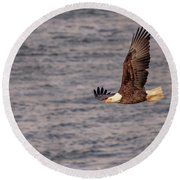 Round Beach Towel featuring the photograph Bald Eagle by Peter Lakomy