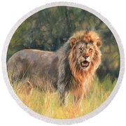 Round Beach Towel featuring the painting Lion by David Stribbling