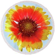 Round Beach Towel featuring the photograph Yellow Flower by Elvira Ladocki