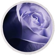 A Beautiful Purple Rose Round Beach Towel