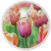 A Bed Of Tulips Is A Feast For The Eyes. Round Beach Towel