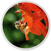 A Bee's Life Round Beach Towel