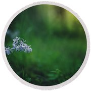 Round Beach Towel featuring the photograph A Bit Of Forest Magic by Shane Holsclaw