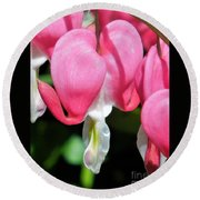 A Bleeding Heart Round Beach Towel
