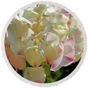 Round Beach Towel featuring the photograph A Blush Of Pink by Cricket Hackmann