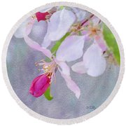 Round Beach Towel featuring the photograph A Breath Of Spring by Betty LaRue