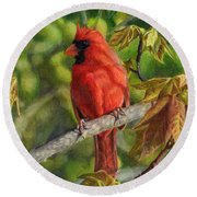 A Cardinal Named Carl Round Beach Towel