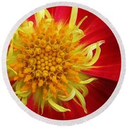 A Colorful Delight Round Beach Towel by Bruce Bley
