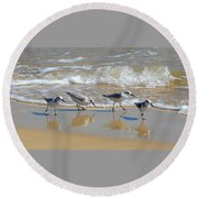 A Cute Quartet Of Sandpipers Round Beach Towel