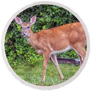 A Deer Young Lady Round Beach Towel