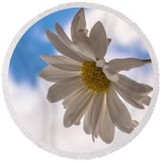 A Different Daisy Round Beach Towel