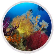 A Diver Looks On At A Colorful Reef Round Beach Towel