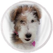 Round Beach Towel featuring the photograph A Dog Named Butterfly by Karen Wiles