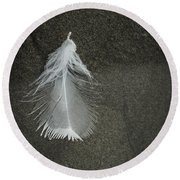 A Feather At The Edge Of The Water Round Beach Towel