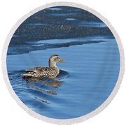 A Female Mallard In Thunder Bay Round Beach Towel by Michael Peychich