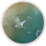 A Flight Of Terns Round Beach Towel