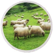 A Flock Of Sheep Round Beach Towel