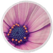 A Flower For You... Round Beach Towel by Rachel Mirror