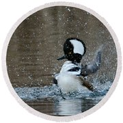 Round Beach Towel featuring the photograph A Flurry Of Feathers by Fraida Gutovich