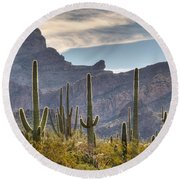 A Forest Of Saguaro Cacti Round Beach Towel by Vivian Christopher