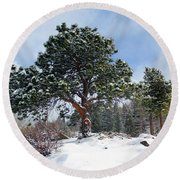 Round Beach Towel featuring the photograph A Fresh Blanket Of Snow by Shane Bechler