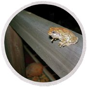 A Frog Went A Courting Round Beach Towel by Randy Rosenberger