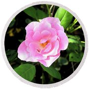 A Gentle Rose Round Beach Towel