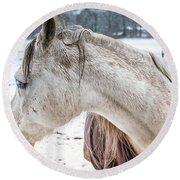 A Girlfriend Of The Horse Amigo Round Beach Towel