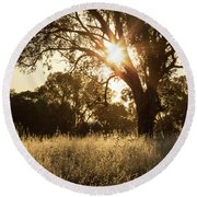 Round Beach Towel featuring the photograph A Golden Afternoon by Linda Lees