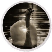 Round Beach Towel featuring the photograph A Golden Moment by Rose-Maries Pictures