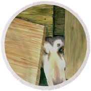 Round Beach Towel featuring the painting A Great Escape  -variation 2 by Yoshiko Mishina