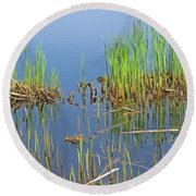 Round Beach Towel featuring the photograph A Greening Marshland by Ann Horn
