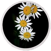 Round Beach Towel featuring the digital art A Group Of Wild Daisies by Chris Flees