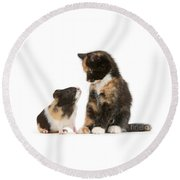A Guinea For Your Thoughts Round Beach Towel