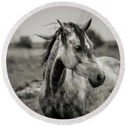 A Horse In Profile In Black And White Round Beach Towel